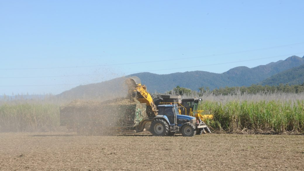 Exportation of Sugar From Brazil Increases During Decline Of Sales Of Ethanol