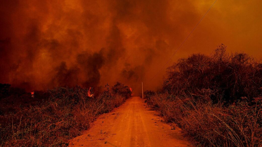Wildfires, Covid-19 And Democracy: Where Do We Go From Here?